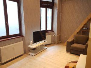 Appartement meublé Budapest 1